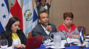 Países de Centroamérica toman medidas contra el gorgojo