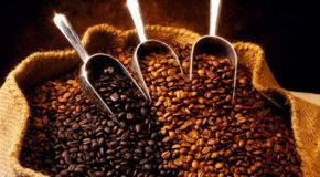 Crece envío de café hondureño a Norteamérica